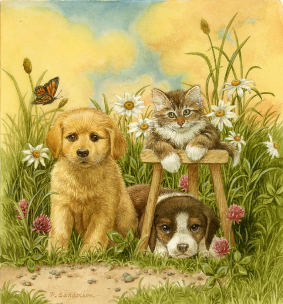 Cat And Mouse Paintings Ruth Sanderson Puppies And Kitten