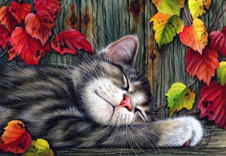 Sleeping Cat Painting Irina Garmashova Sweet Chap