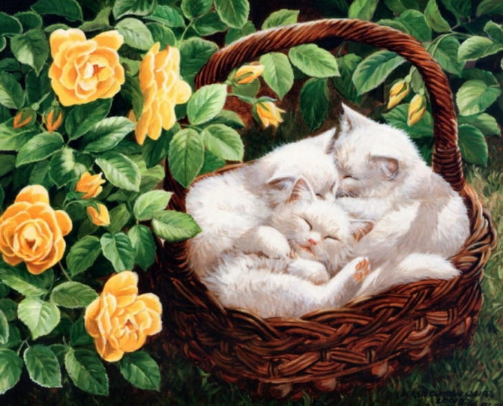 http://catsfineart.com/assets/images/cats/SleepingCat/db_Persis_Clayton_Weirs-slaa1.jpg