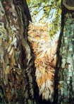 Cat in tree - James Hugh Beattie