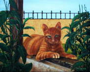 Cat - Joe Satterwhite