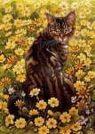 Lesley Anne Ivory - A Cat's Example