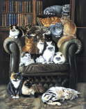 Pollyanna Pickering - A Cats Life