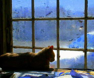 Randall Weidner - Cat in the Window